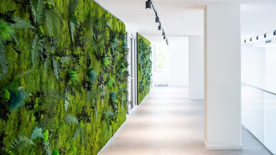Vitalising green plays an important role throughout the complex. Here the Green Wall.
