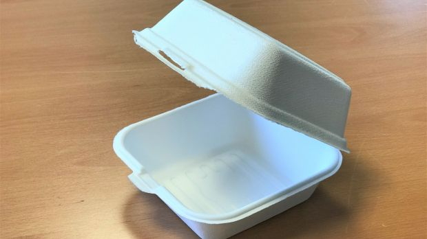 Verpackung aus Bagasse bei LZ-Catering