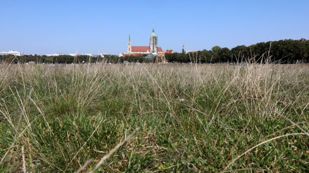 The Theresienwiese in September 2020. It could be empty here again this year.